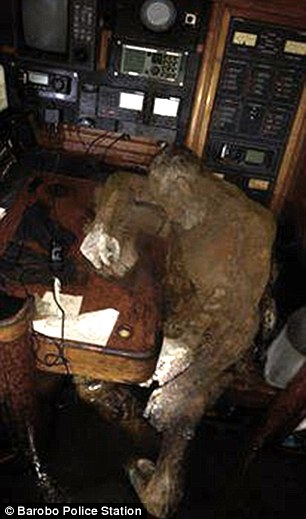0578-3469044-His_decomposing_body_was_found_near_to_the_radio_telephone_as_if-a-21_1456736069055.jpg