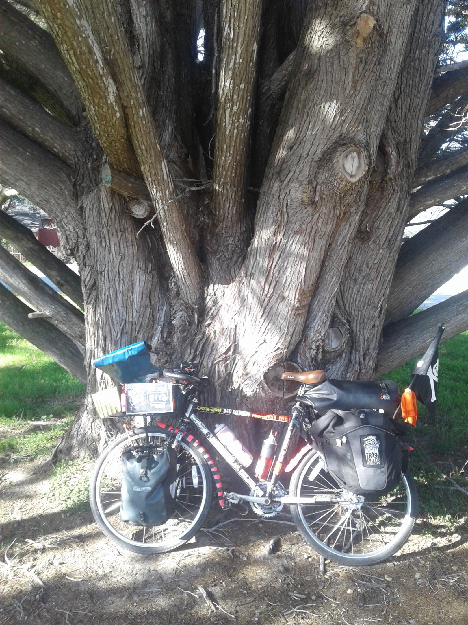 20181230_124908-jpg.48441_FIRST EVER BIKE TOUR (PICS)_Bike Touring_Squat the Planet_2:26 PM