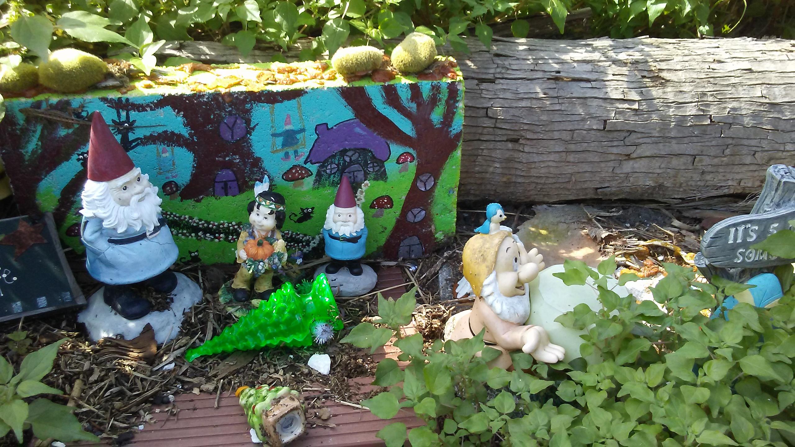20190202_133300-jpg.48853_Gnome Village......!_Travel Stories_Squat the Planet_12:14 PM