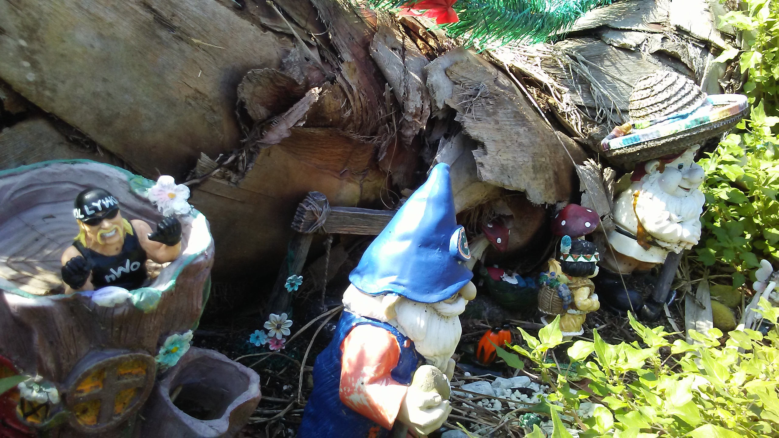 20190202_133354-jpg.48846_Gnome Village......!_Travel Stories_Squat the Planet_12:14 PM