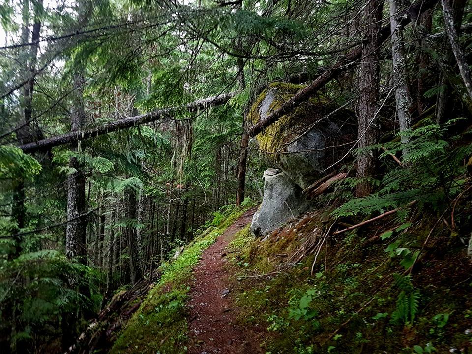 35052189_10155709324051483_5469538008464097280_n-jpg.44384_West Kootenay Wandering_Canada_Squat the Planet_3:23 AM