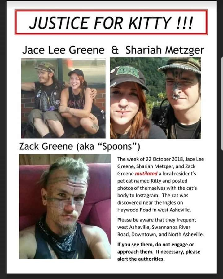 44942018_186692165565993_8995102810064289792_n-jpg.47166_Shariah Metzger, Jace Lee Greene, Zack Greene (aka Spoons) for animal torture in Asheville_Untrustworthy and Shady People_Squat the Planet_10:18 AM