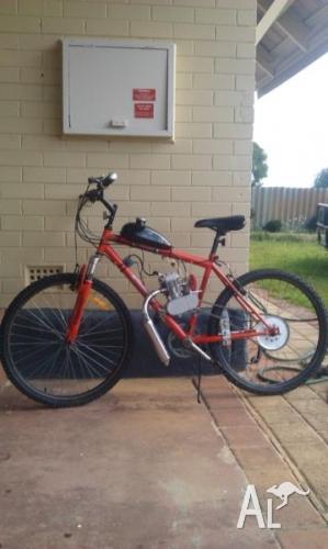 80cc_motorised_push_bike_21027663.jpg