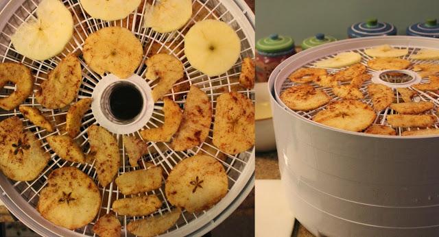 apples-jpg.46767_Preparing for Winter in Alaska :: Rose Hips :: Dried Seaweed_Wilderness Survival_Squat the Planet_11:11 PM