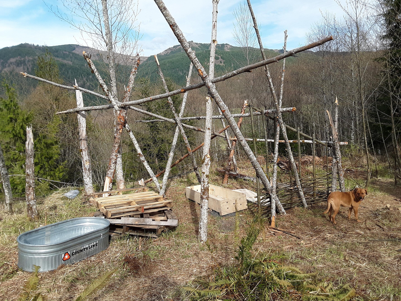 beginning of barn.jpg