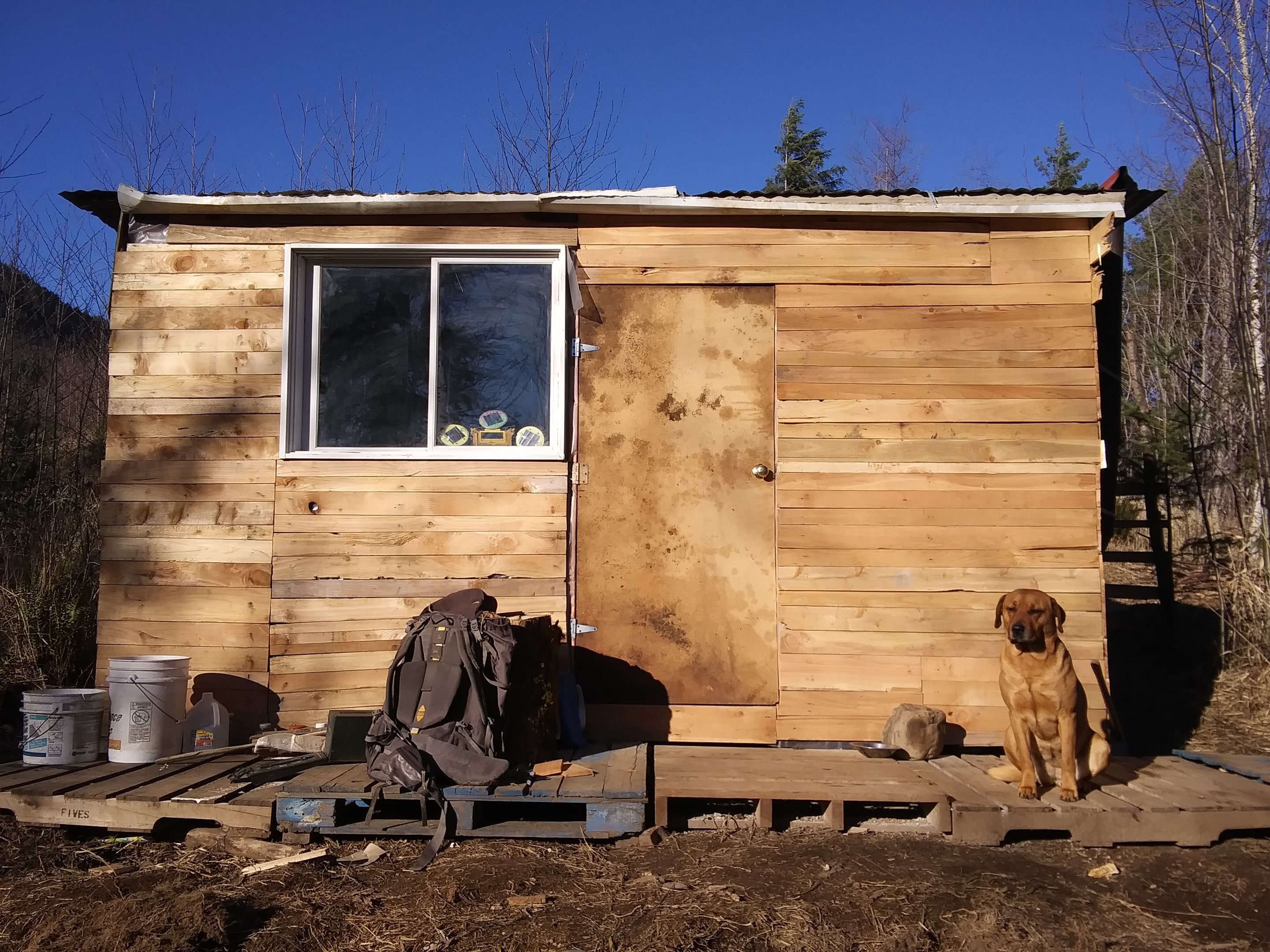 front-of-house-with-poop-door-jpg.52731_Off-Grid homesteadin' wing'n it yeh_Alternative Housing_Squat the Planet_12:24 PM