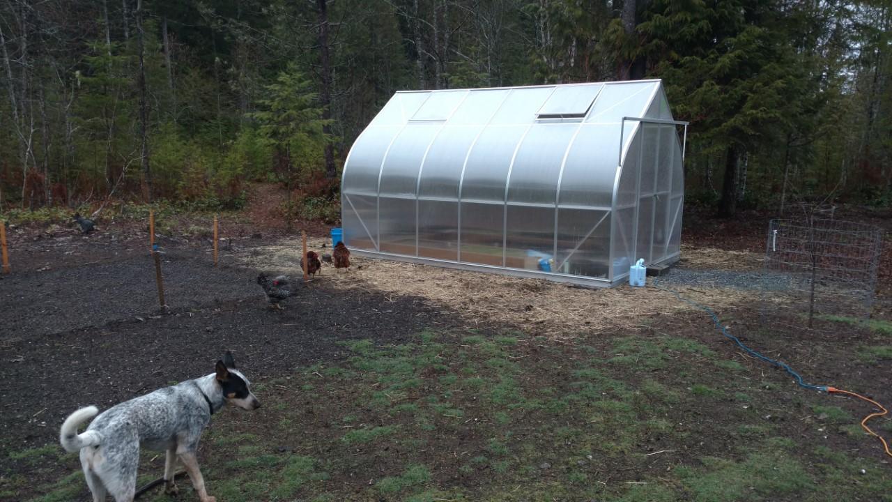 garden2-jpg.42065