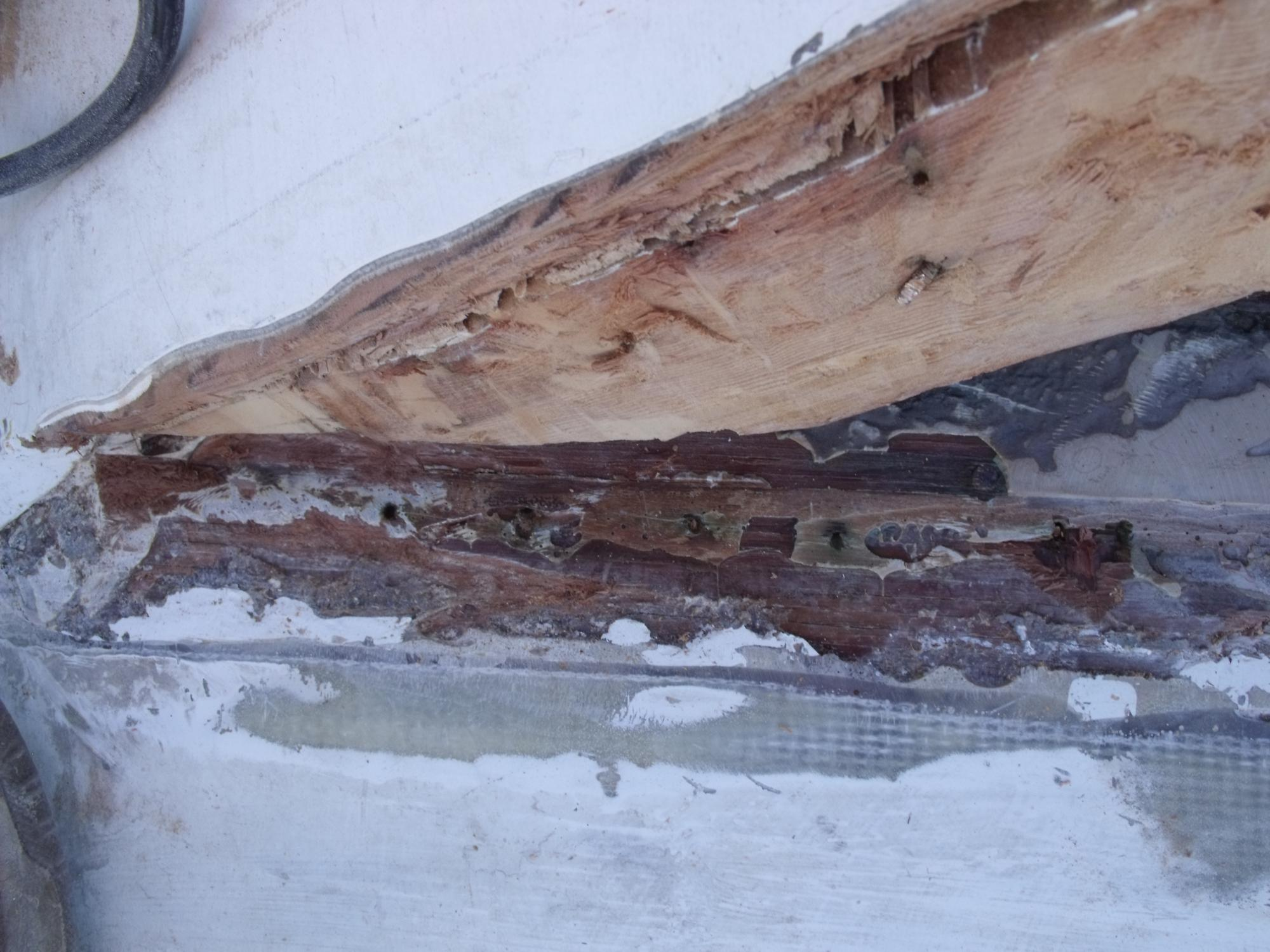 good port berth timber closeup 2.JPG