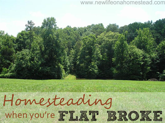 homesteading-when-youre-flat-broke-small-jpg.22349_Flat broke homesteading_Alternative Housing_Squat the Planet_12:08 PM