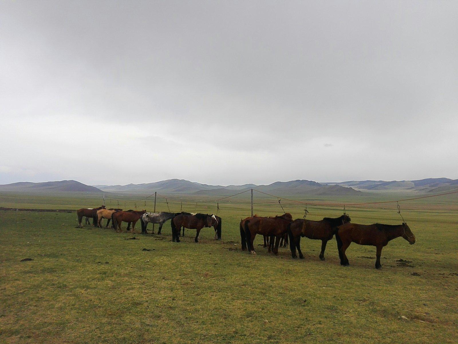 img_20160523_154825-jpg.30637_Mongolia Rainbow Horse Caravan_Travel Stories_Squat the Planet_4:14 AM