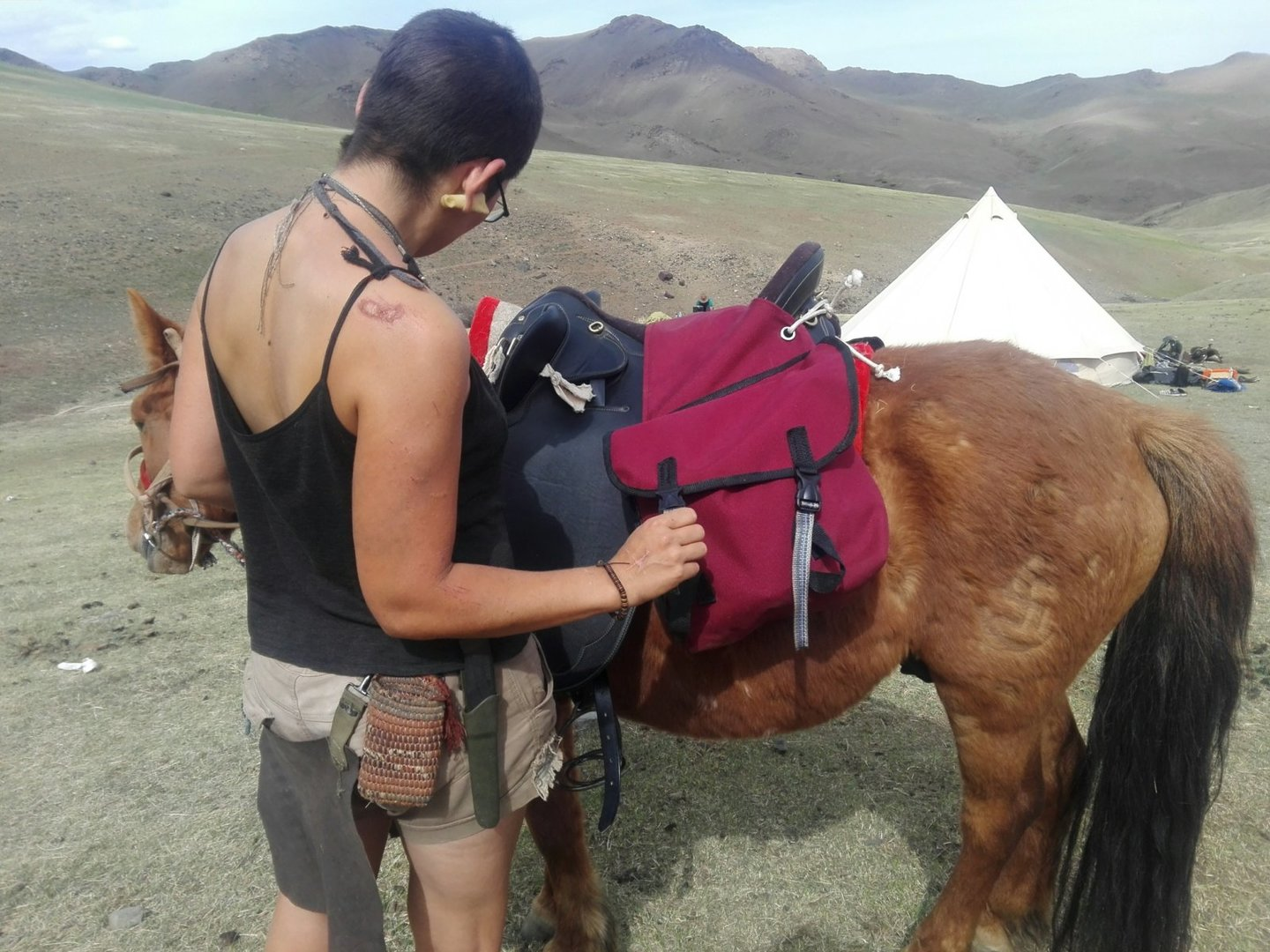 img_20160531_232759-jpg.40815_Polvo the Mongolian Horse_Furry Nomads_Squat the Planet_{posttime}