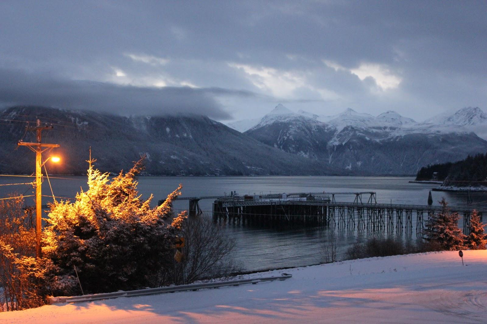 img_2347-jpg.46775_Preparing for Winter in Alaska :: Rose Hips :: Dried Seaweed_Wilderness Survival_Squat the Planet_3:33 PM