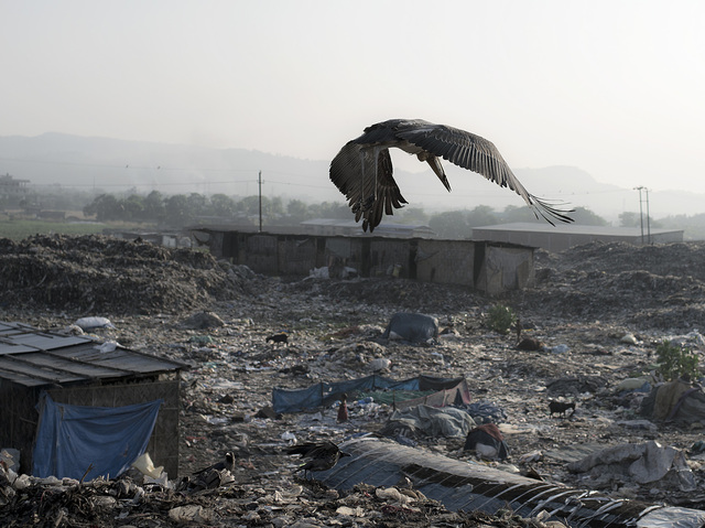 india3-jpg.21072_Living inside a landfill_Squatting_Squat the Planet_10:58 AM