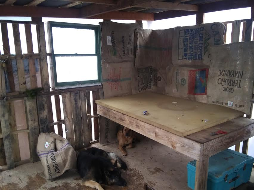 naked-bed-jpeg.52725_Off-Grid homesteadin' wing'n it yeh_Alternative Housing_Squat the Planet_12:24 PM