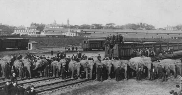 Ringling_Brothers_trains1.jpg