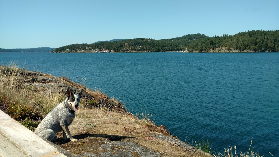 sj4-jpg.52505_Spent the past week sailing around the San Juan Islands..._Boat Punk / Sailing_Squat the Planet_12:35 AM