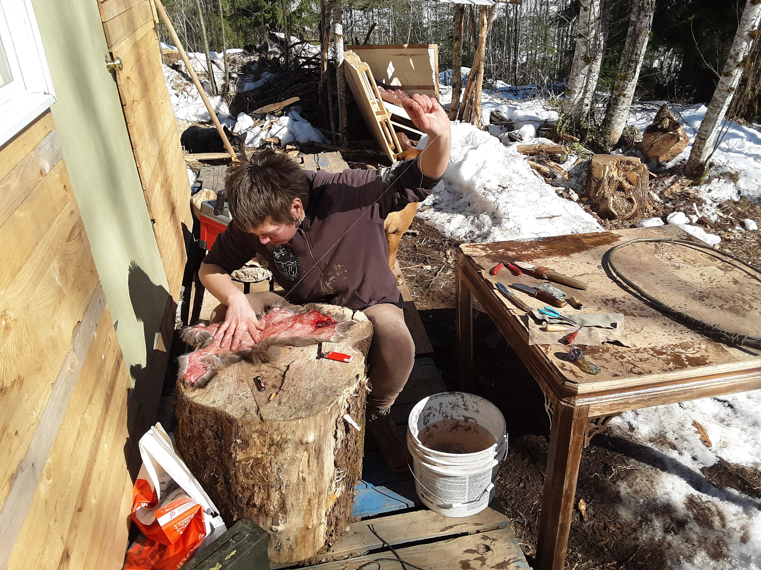 the-art-of-preparing-skin-jpg.52732_Off-Grid homesteadin' wing'n it yeh_Alternative Housing_Squat the Planet_12:24 PM