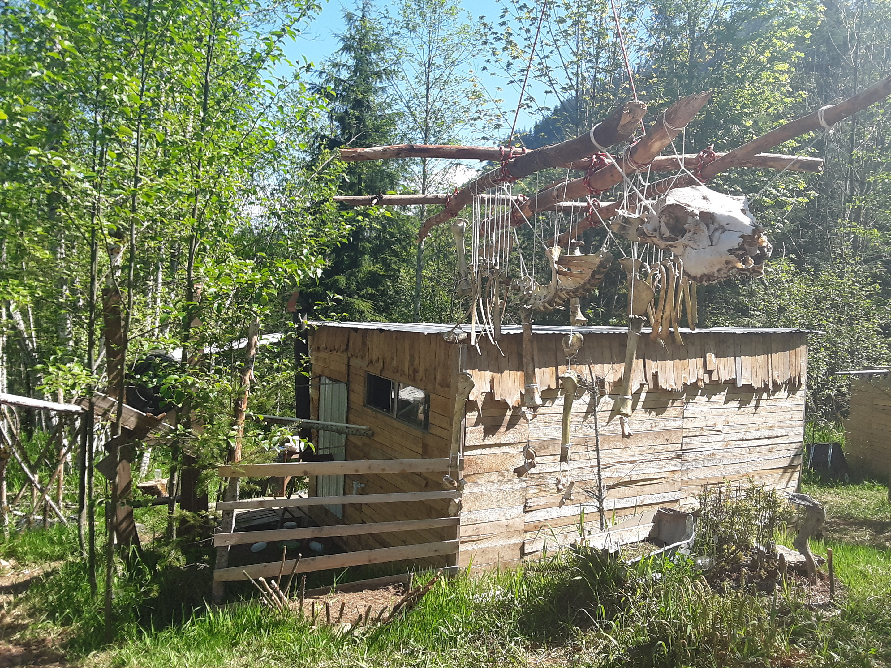 view-of-backhouse-with-skeleton-jpg.52750_Off-Grid homesteadin' wing'n it yeh_Alternative Housing_Squat the Planet_12:24 PM