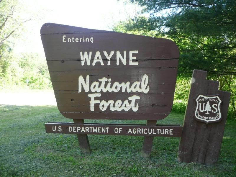 wayne_national_forest.jpg