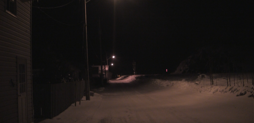Winter fox 3.png